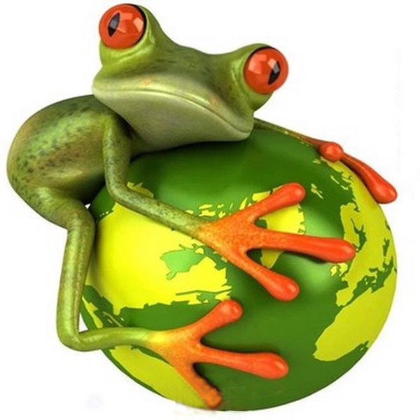 The Hugging Earth Frog Car Sticker
