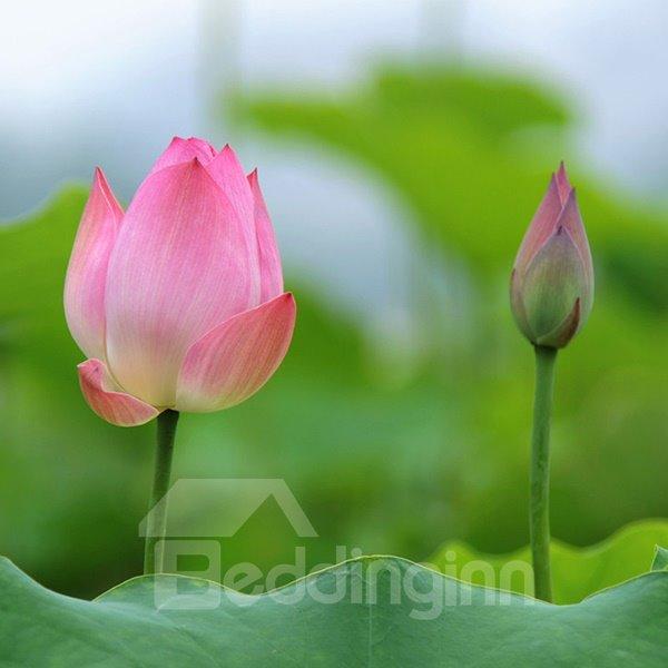 Gorgeous Pure Lotus Sun Umbrella
