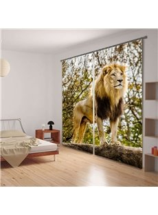 Vivid Lion King Printing 3D Curtain