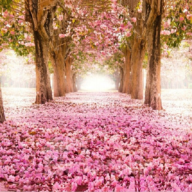 Romantic Pink Forest 1-Piece DIY Diamond Sticker