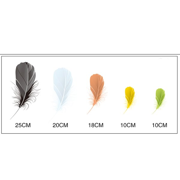 Beautiful Different Color And Size Feather Car Stickers