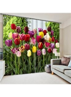 Colorful Tulips Printing Polyester 3D Curtain
