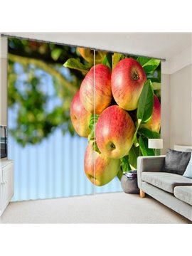 Vivid 3D Digital Print Energy Saving Curtain