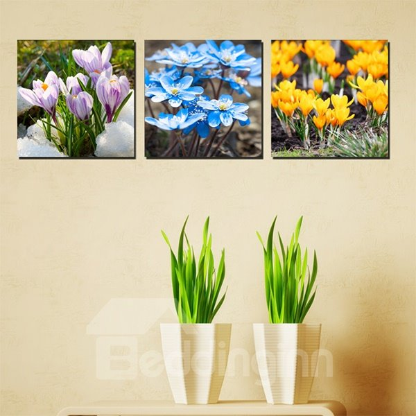 Gorgeous 3-Color Flower Canvas 3-Panel Wall Art Prints