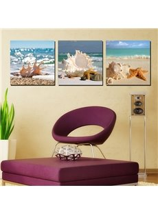 Wonderful Beach Seashells and Stafish Canvas 3-Panel Modern Art Prints