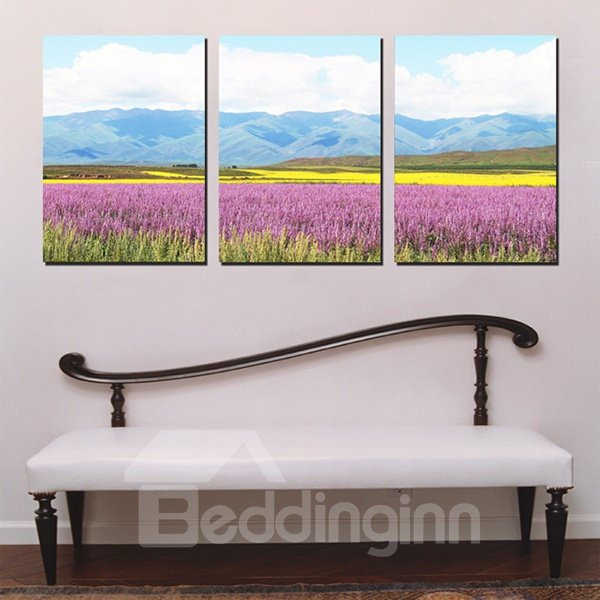 Beautiful Lavendar Field with Hills in the Distance Canvas 3-Panel Wall Art Prints