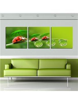 Creative Ladybug Under Umbrella 3-Panel Canvas Wall Art Prints
