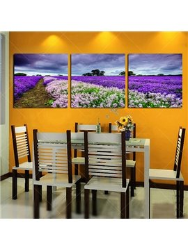 Wonderful Lanvender Field Frameless 3-Panel Wall Art Print