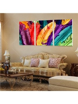 Unique Colorful Feathers Framed 3-Panel Wall Art Print