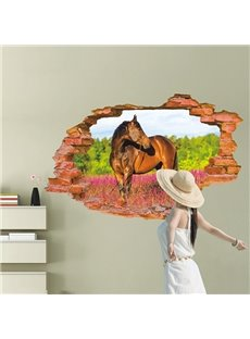 Amazing Broken Hole View Horse in Field Removable 3D Wall Stickers