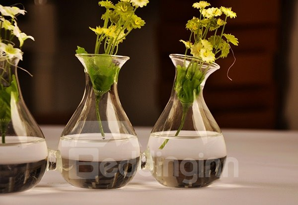 Creative Triple Connected Glass Desktop Flower Vase Sets