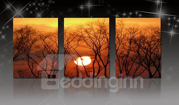 Fascinating Bare Trees in Sunset 3-Panel Canvas Wall Art Prints