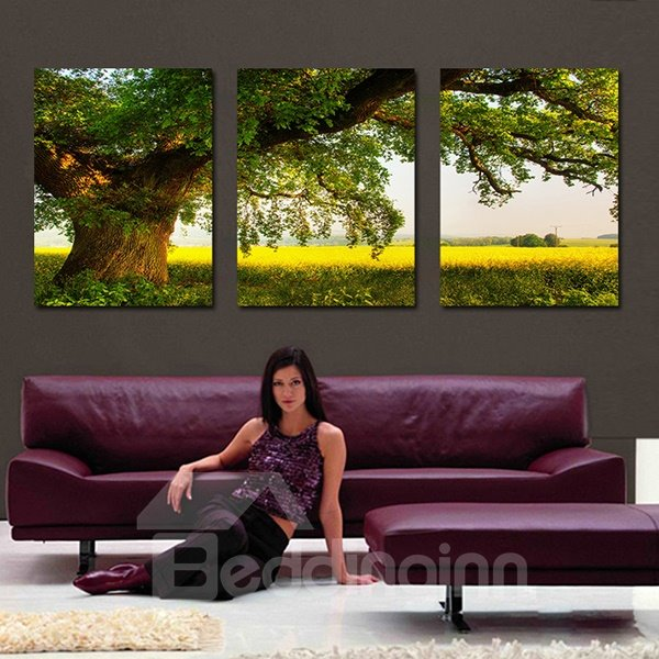 Thriving Tree in Fields 3-Panel Canvas Wall Art Prints