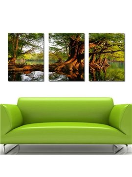 Amazing Banyan Tree in Water 3-Panel Canvas Wall Art Prints