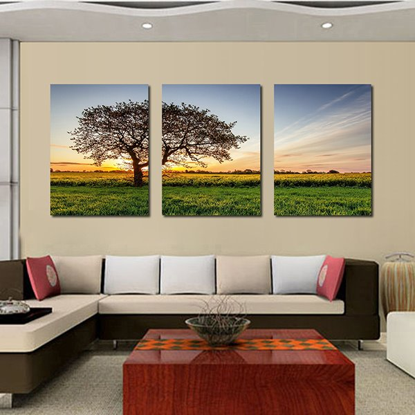 Giant Sycamore Tree Alone in Field 3-Panel Canvas Wall Art Prints