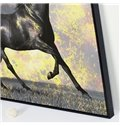 Amazing Black Horse Framed 1-Panel Wall Art Print