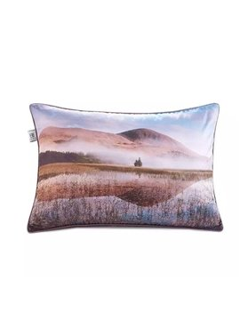 Broad Fields Paint Throw Pillow