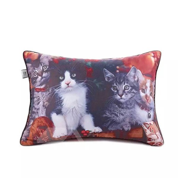 Two Lovely Kittys Paint Throw Pillow