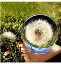 Fabulous Handmade Music Box with Real Dandelion Floating in Crystal Ball