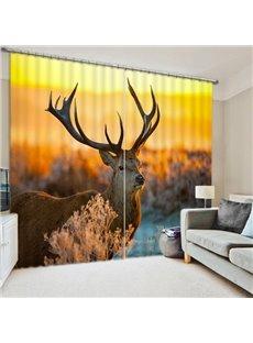 A Milu Deer At Sunset Print 3D Blackout Curtain