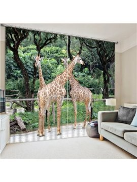 Three Giraffes Playing Print 3D Blackout Curtain