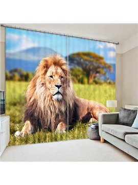 Vivid Majestic Lion Lying on the Grassland Print 3D Blackout Curtain