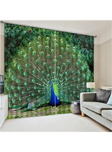 Peacock Spreading the tail Print 3D Blackout Curtain