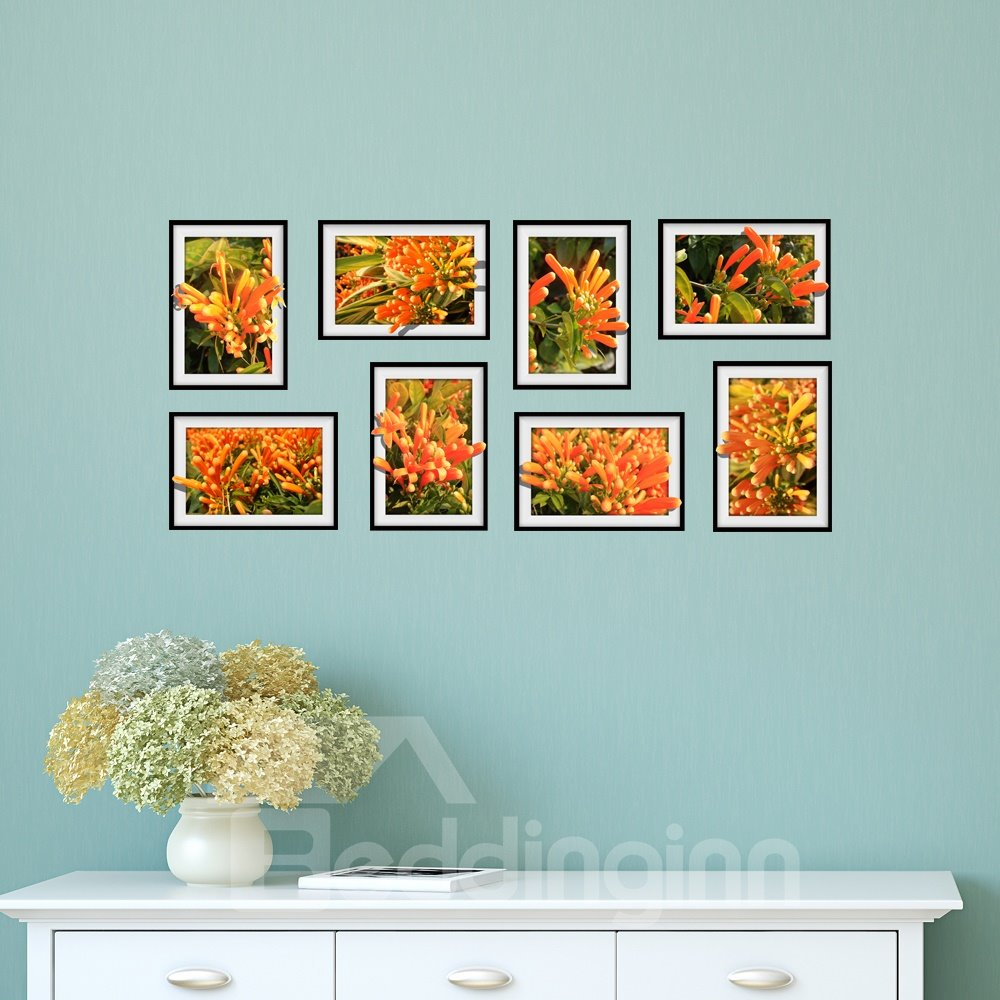 Orange Pyrostegia Venusta Photo Frame Wall Sticker
