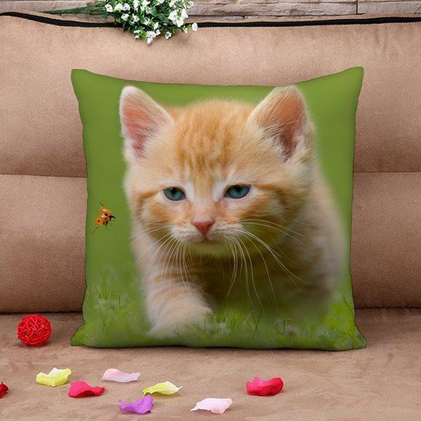 Naughty Cat and Ladybird Print Throw Pillow Case