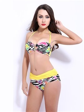 Female Colorful Leopard Halter Bra with Falsies and Free Wire Push-up Bikini Set