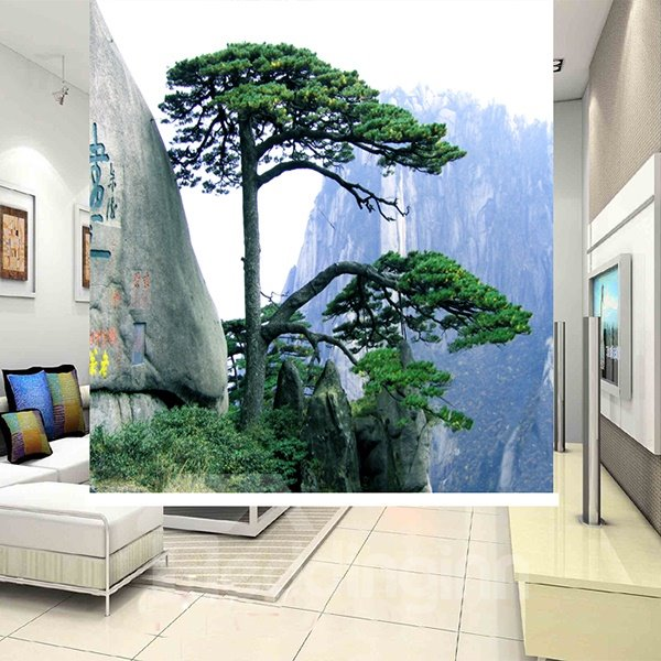 Amazing Pine Living in the Rock 3D Printing Blackout Roller Shades