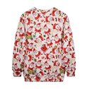 Cute Christmas Style Santa Claus Pattern 3D Painted Hoodie