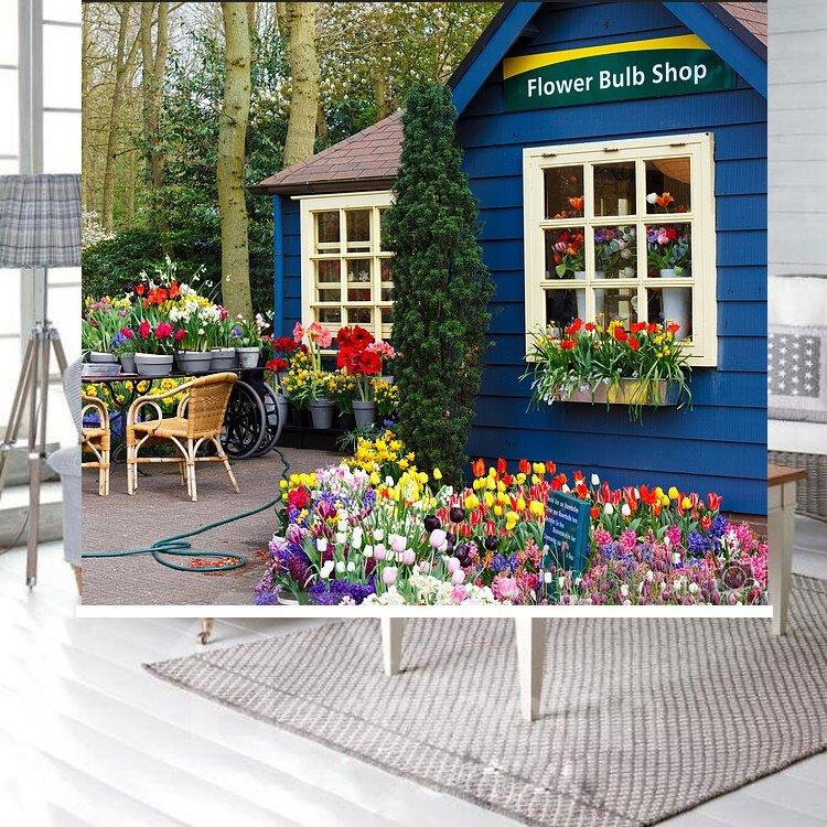 Blue Flower Shop Printing Blackout 3D Roller Shades