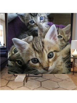Pretty Cute Cats Printing Blackout 3D Roller Shades