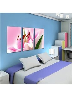 Pink Decorative Lily Pattern 3 Pieces Canvas None Framed Wall Art Prints