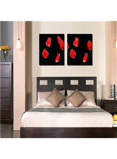 Black Background with Red Callas Printed 2-Piece Canvas Framed Prints