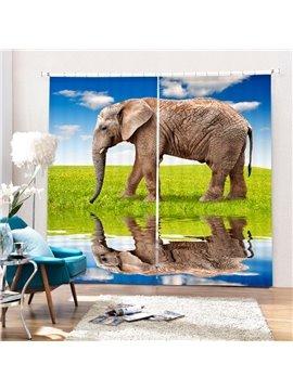 Vivid Wild Elephant Printing 3D Curtain
