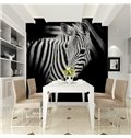 Zebra PVC Waterproof and Durable TV/Sofa Background Black 3D Wall Murals