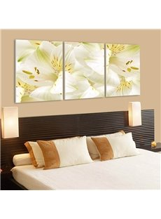 Durable Fresh Lily Pattern 3 Panels Framed Wall Art Prints