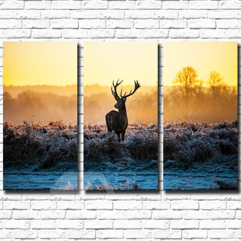 Natural Deer in Prairie Pattern 3 Pieces Framed Wall Art Prints
