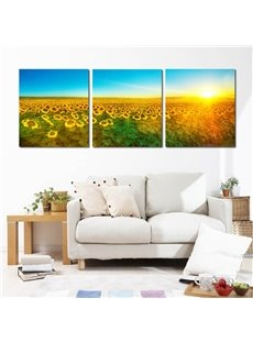 Wonderful Sunshine Sunflowers Field 3 Pieces Framed Wall Art Prints