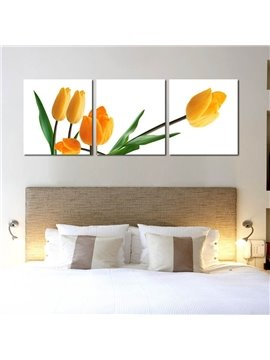 Beautiful and Elegant Tulip Flowers Pattern Design 3 Pieces Framed Wall Art Prints