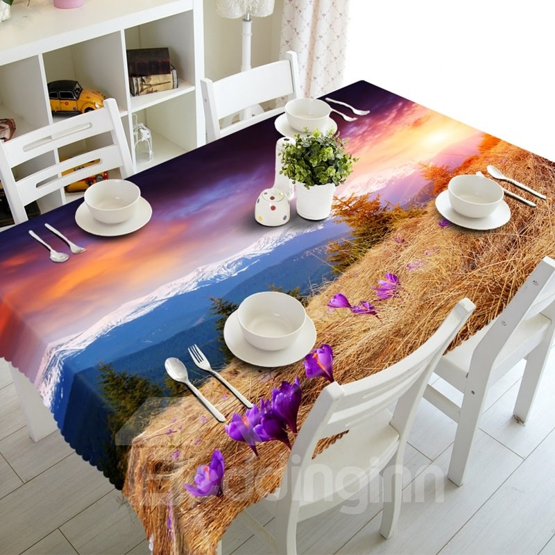 Modern Design Snow Mountain Scenery Dining Room Decoration 3D Tablecloth