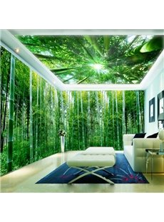 Green Natural Bamboo Forest Pattern Design Waterproof 3D Ceiling and Wall Murals