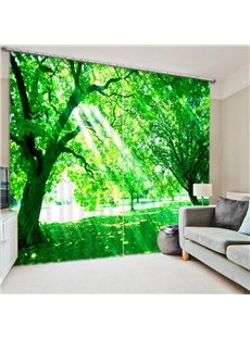 Bright Sunshine through the Green Leaves 3D Printed Polyester Curtain