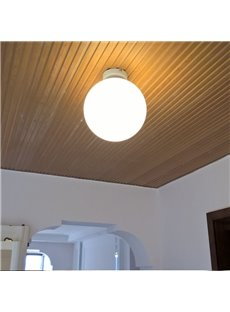 Round Ball Pattern Hardware and Glass Simple Style 1-Bulb Wall Light/Flush Mount