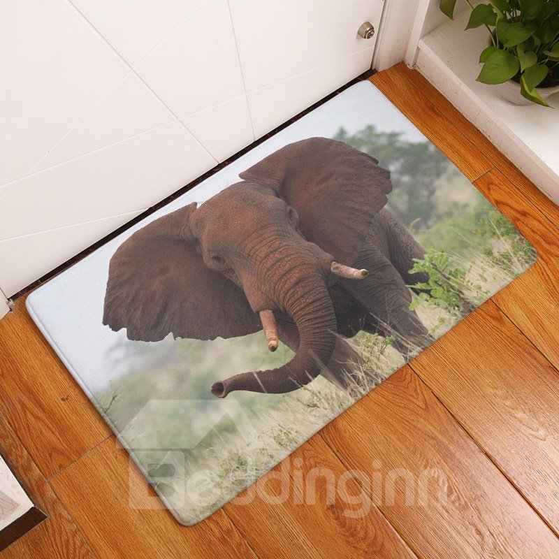 16×24in Brown Elephant in Field Flannel Water Absorption Soft and Nonslip Bath Rug/Mat