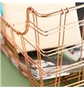 Golden Basket Iron Durable and Eco-friendly 1 Piece Makeup Accessory