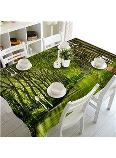 Giant trees and Small Road Natural Scenery Home and Hotel Square Table Cover Cloth