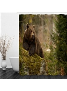 Bear Pattern Polyester Waterproof and Eco-friendly 3D Shower Curtain
